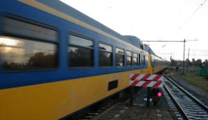 Noodstop voor Zwaan op spoor bij Soest